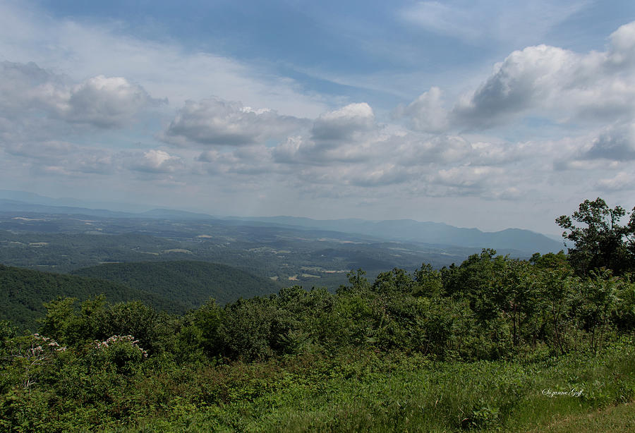 Blue Ridge Mountain Views II by Suzanne Gaff