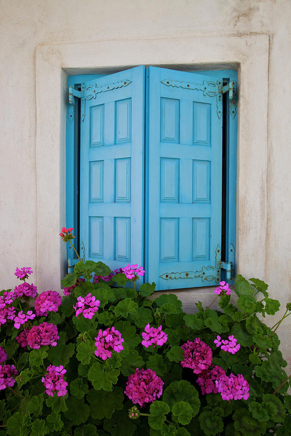 Blue Shutters And Geraniums Blooming Photograph by Darrell Gulin