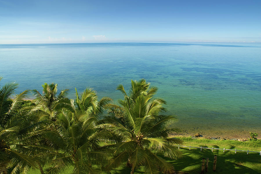 Blue Sky And Palm Trees At Noumea Bay Photograph by Juuce