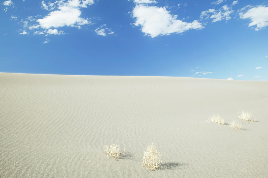 Blue Sky Over Sand Dune Photograph by Bryan Mullennix