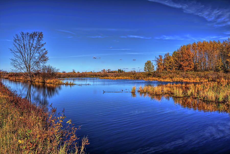 Blue Sky Reflection At The Mead by Dale Kauzlaric