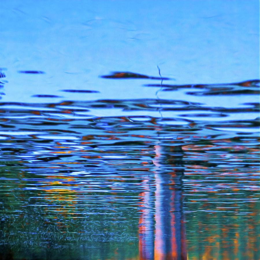 Blue Snake by Robert FERD Frank