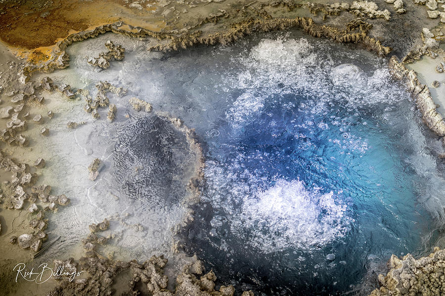 Blue Star Springs 2 by Rick Billings