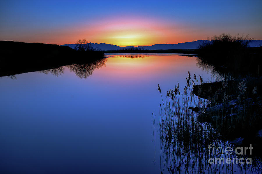 Blue Sunset by Roxie Crouch