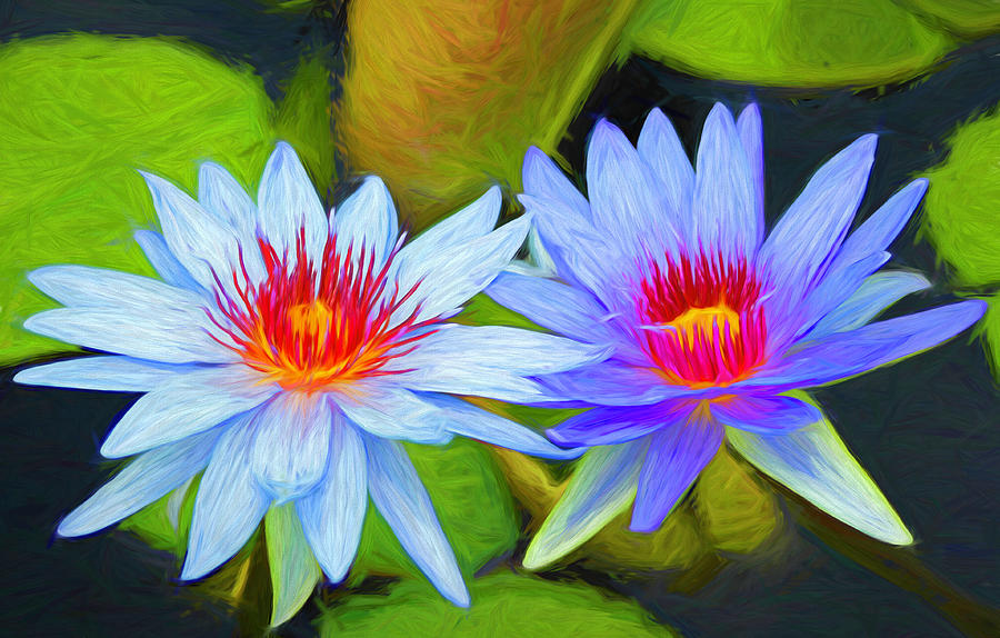 Blue Water Lilies Painted Photograph