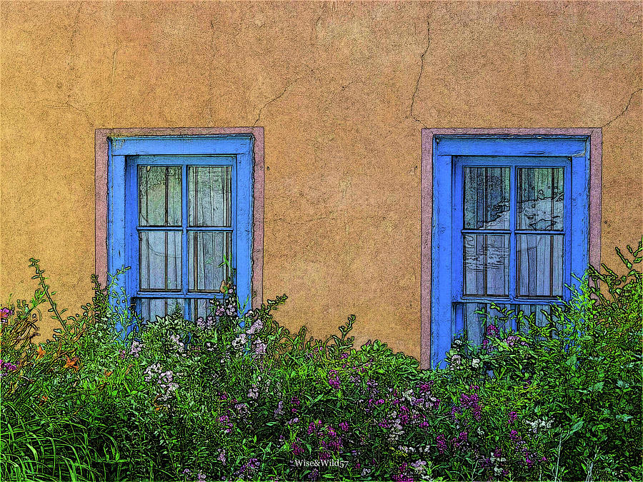 Blue Windows by WiseWild57