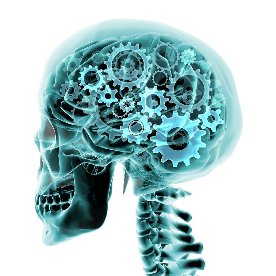 Blue X-ray Of The Brain And Skull With Digital Art by Hank Grebe
