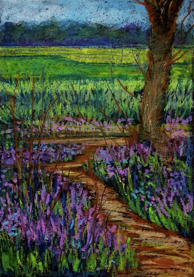 Bluebell pathway by Asha Sudhaker Shenoy