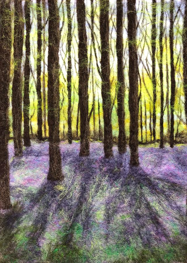 Bluebells 6 by Ushma Sargeant