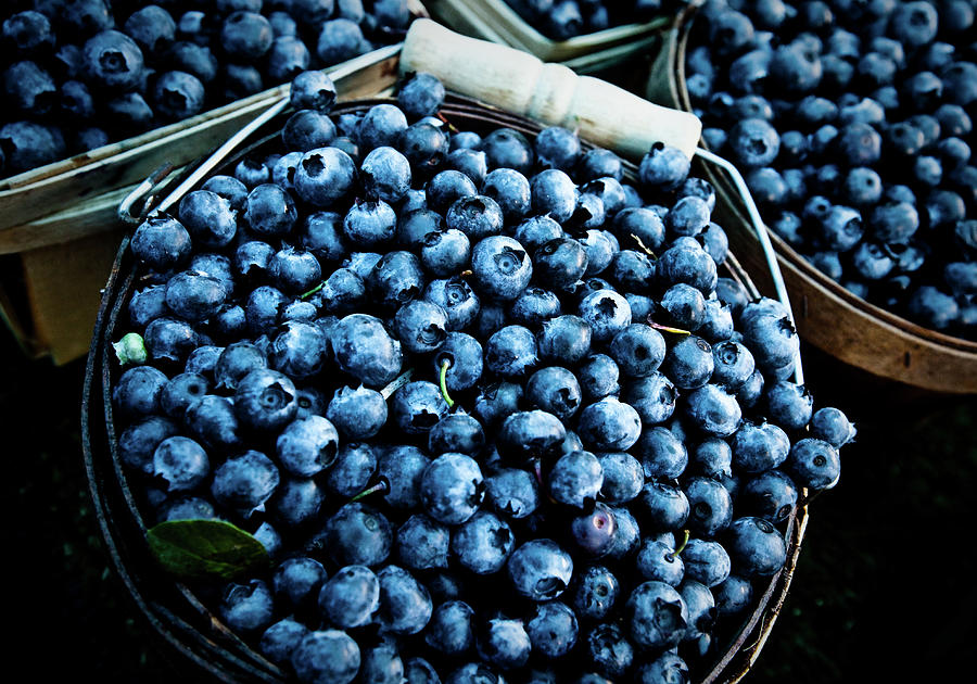 Blueberries At Farmers Market Photograph by Richard Deming Photography