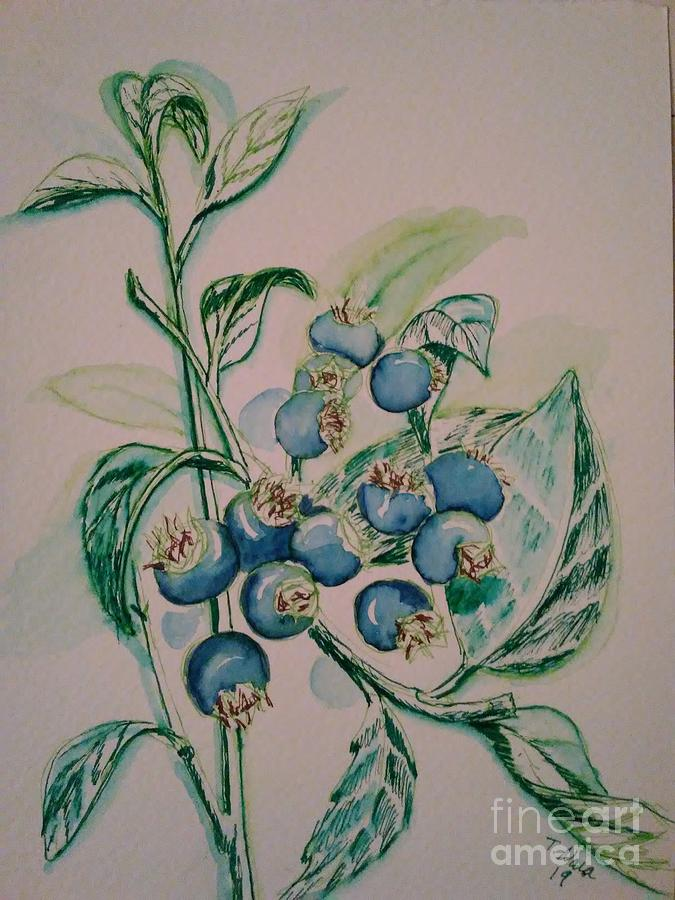 Blueberry Plant Painting - Blueberries At Lake Pickerel by Tammy Nara