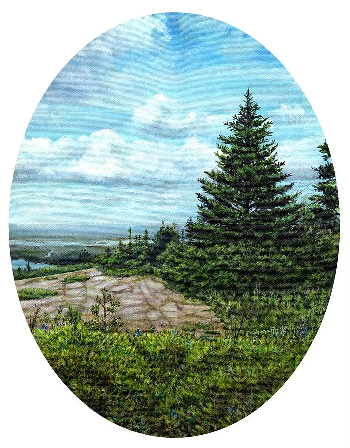 Blueberries on Cadillac Mountain by Shana Rowe Jackson