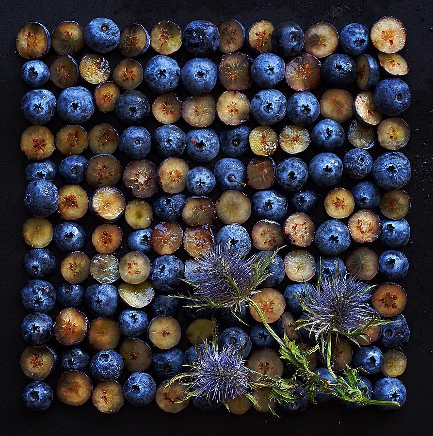 Blueberry Grid by Sarah Phillips