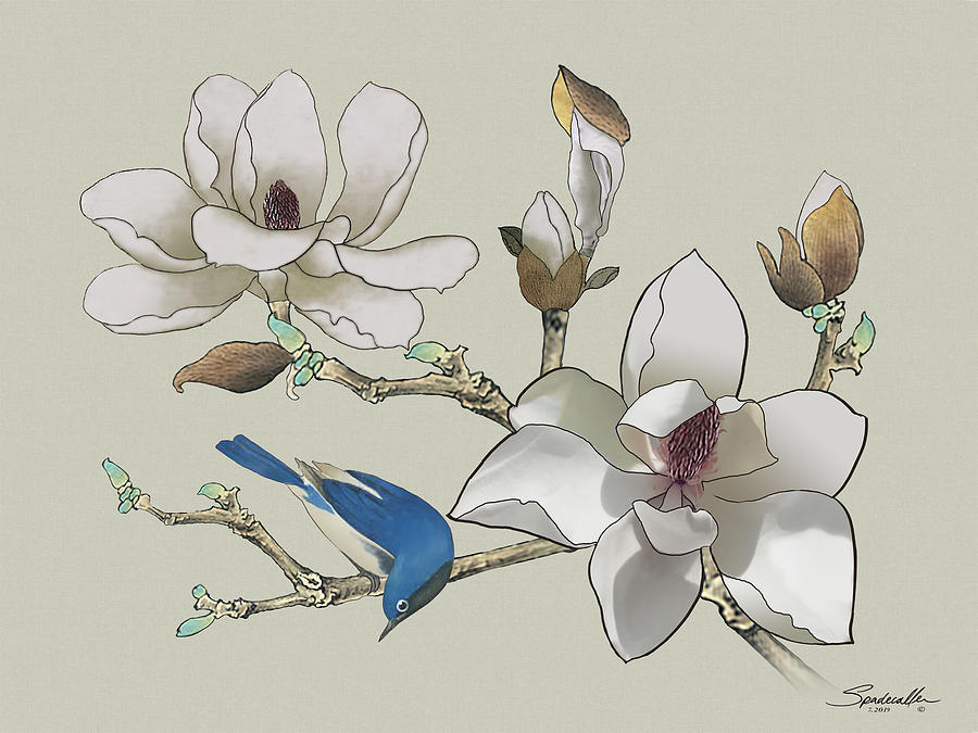 Bluebird and Magnolia by Spadecaller