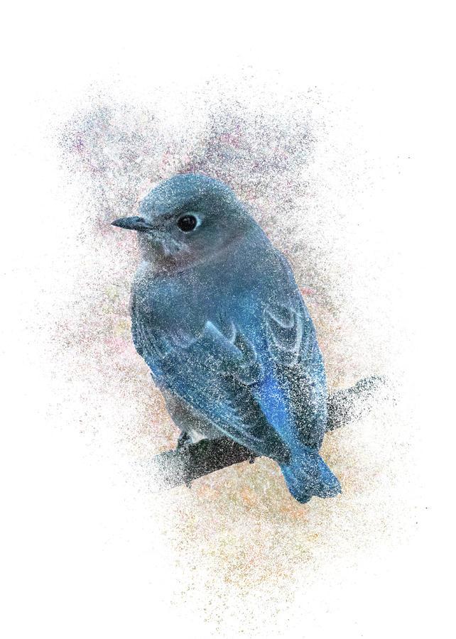 Bluebird Back by Patti Deters