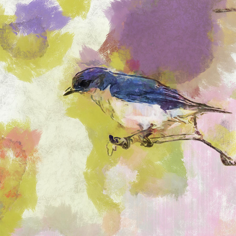 Bluebird Watercolor Version 2 by Dan Sproul
