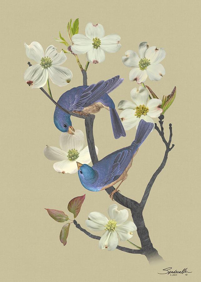 Bluebirds in Dogwood Tree by Spadecaller