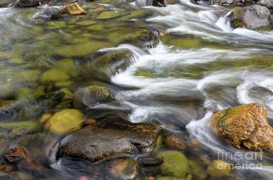 Blurred Swirls Of Oak Creek Photograph