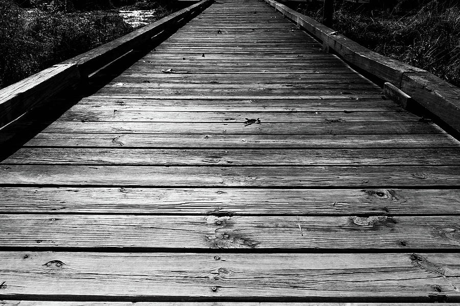 Boardwalk  by Doug Camara