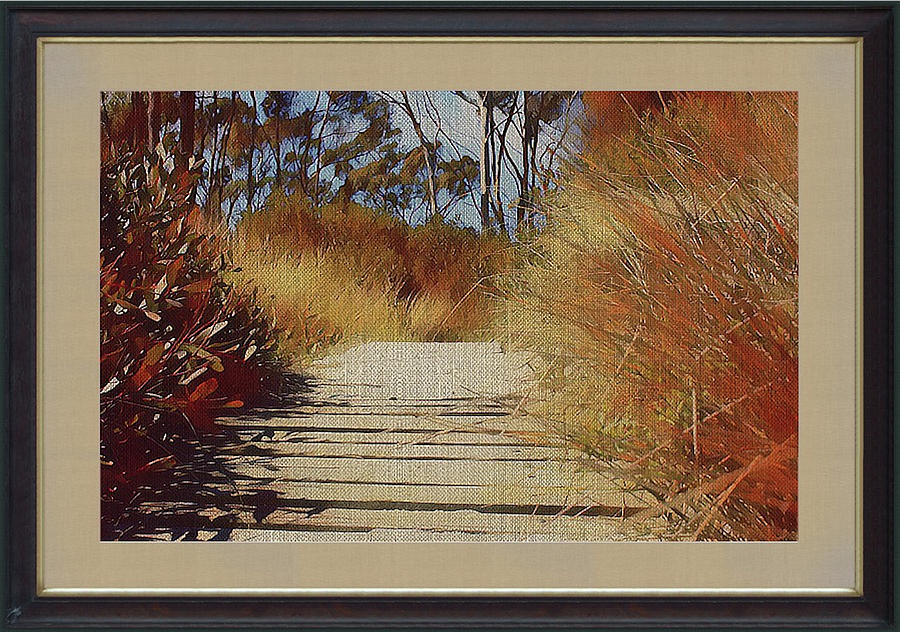 Boardwalk To The Beach by Clive Littin