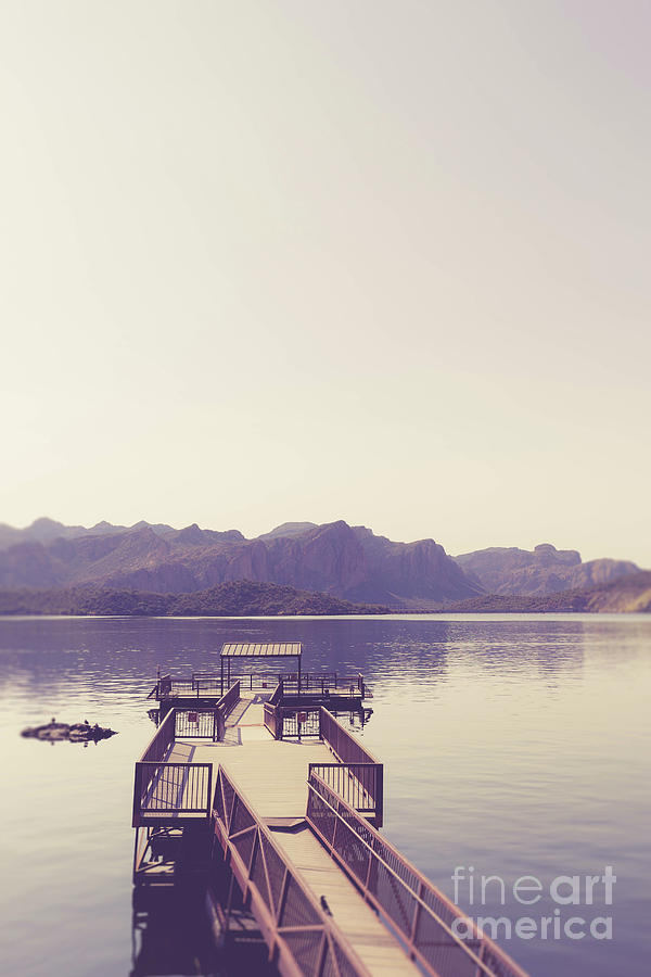 Lake Photograph - Boat Dock Tonto National Forest by Edward Fielding