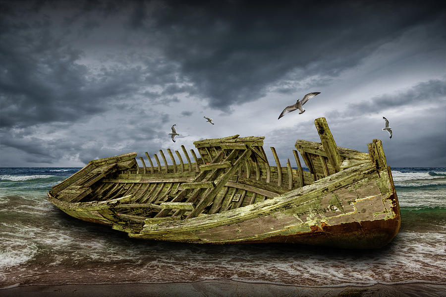 Boat Shipwreck on the Beach Shore by Randall Nyhof