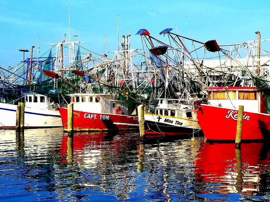 Boats in Harbor  by Joe Roache