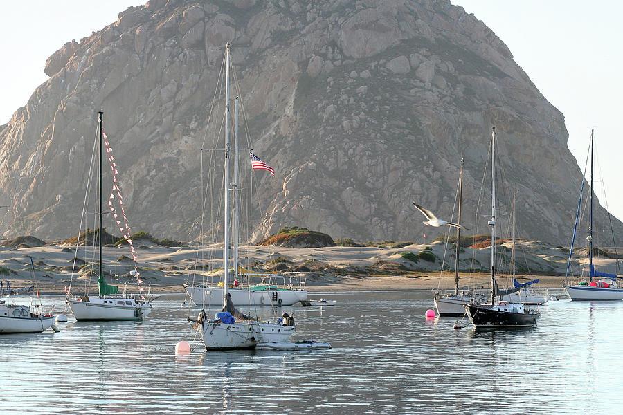 Boats in Morro Bay by Michael Rock