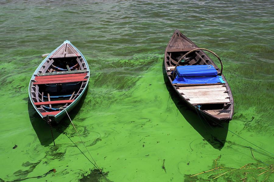 Boats on algae, in Santarem, Brazil. by Ian Robert Knight