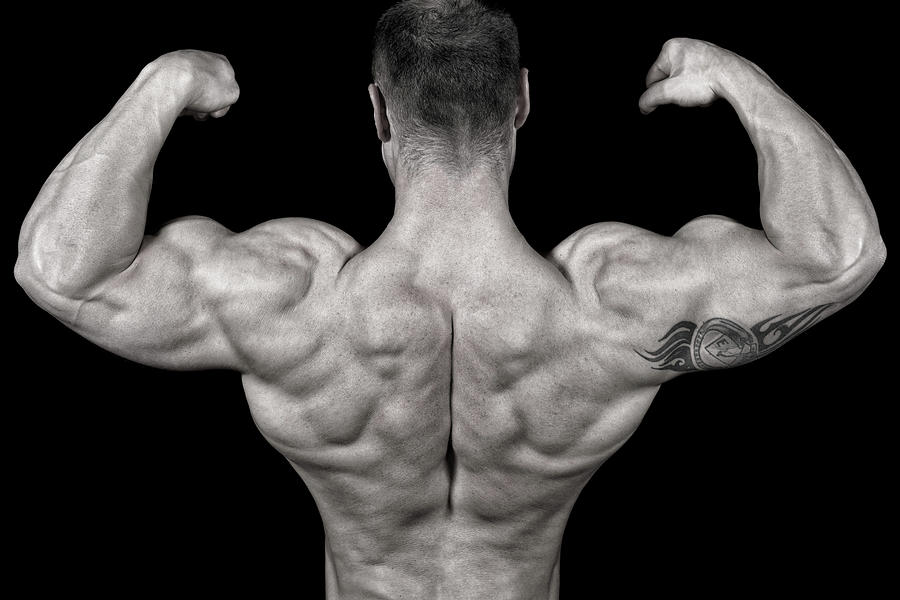 Bodybuilder Posing Photograph by Vuk8691