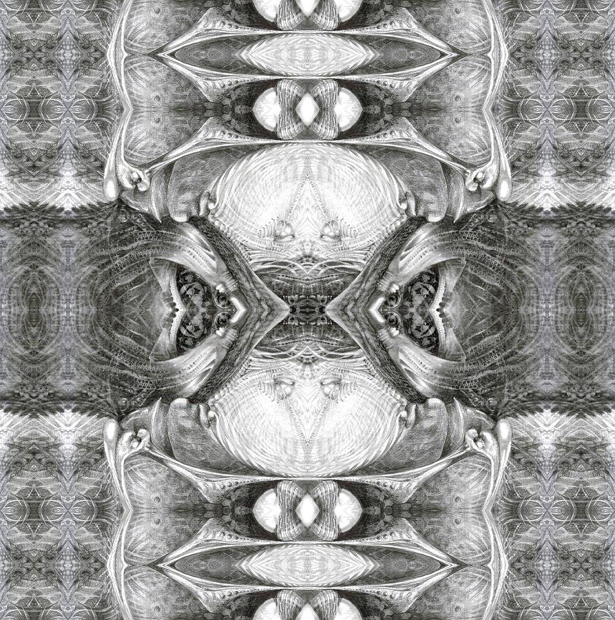 Bogomil Variation 7 Digital Art