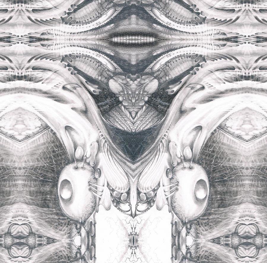 Bogomil Variation 9 Digital Art