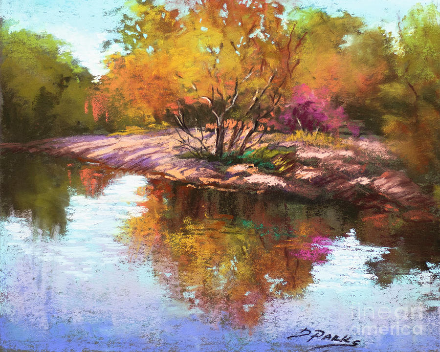Bogue Chitto River by Dianne Parks