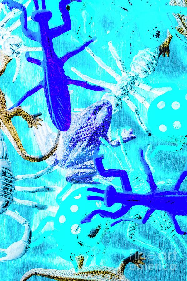Bohemian Blue Photograph