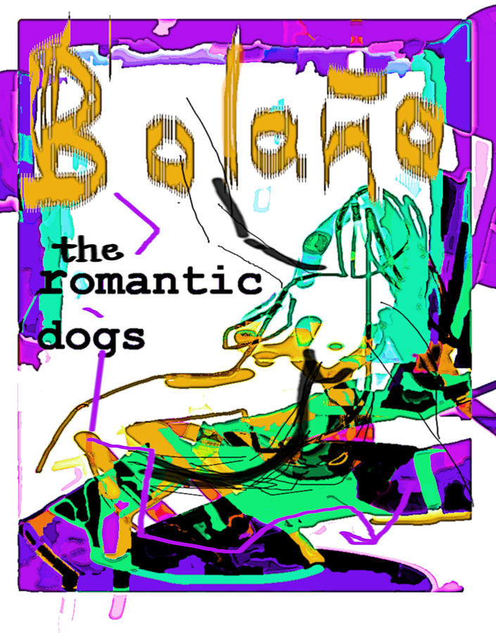 Bolano RD  Poster by Paul Sutcliffe