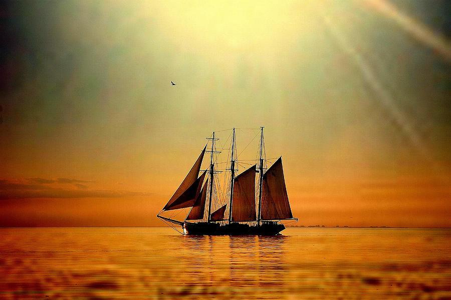 Bon Voyage Photograph by By Tonnydeleeuw