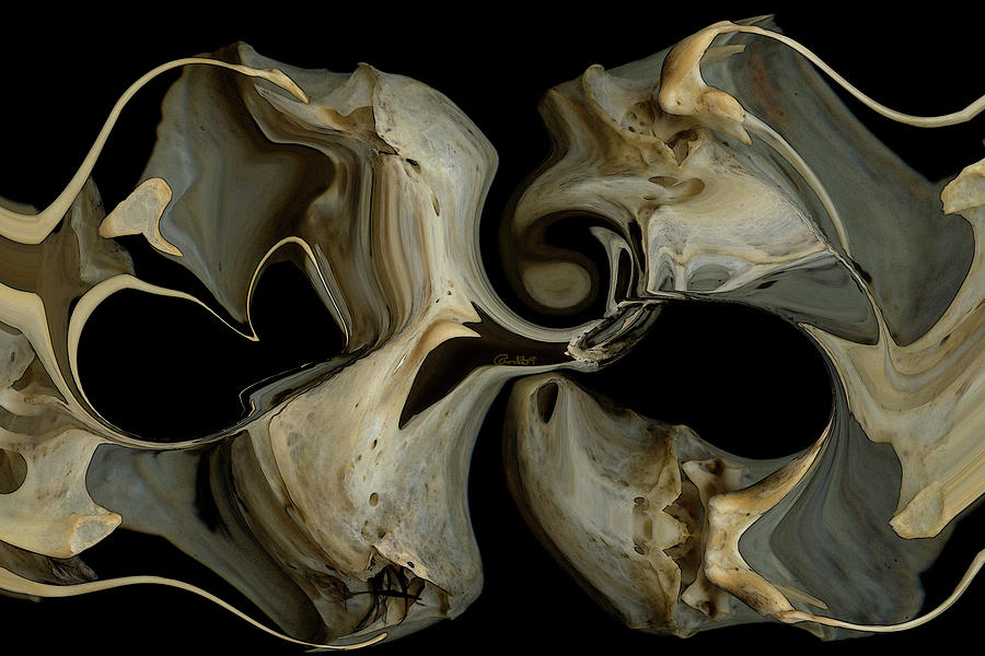 Bone Digital Art - Bone Garden by Carel Schmidlkofer