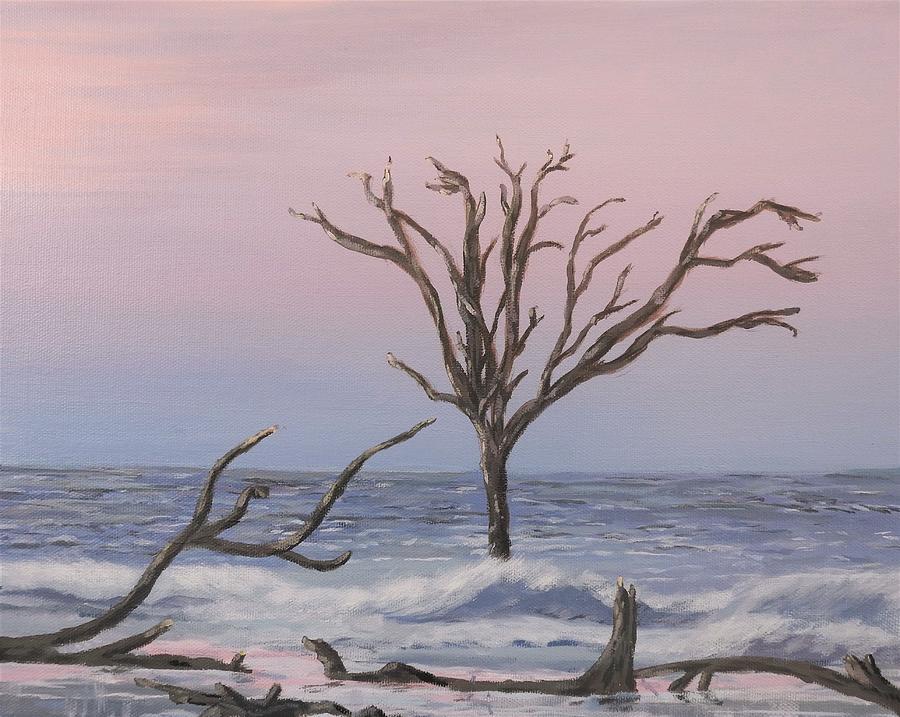 Boneyard Beach Sunrise by Deborah Smith