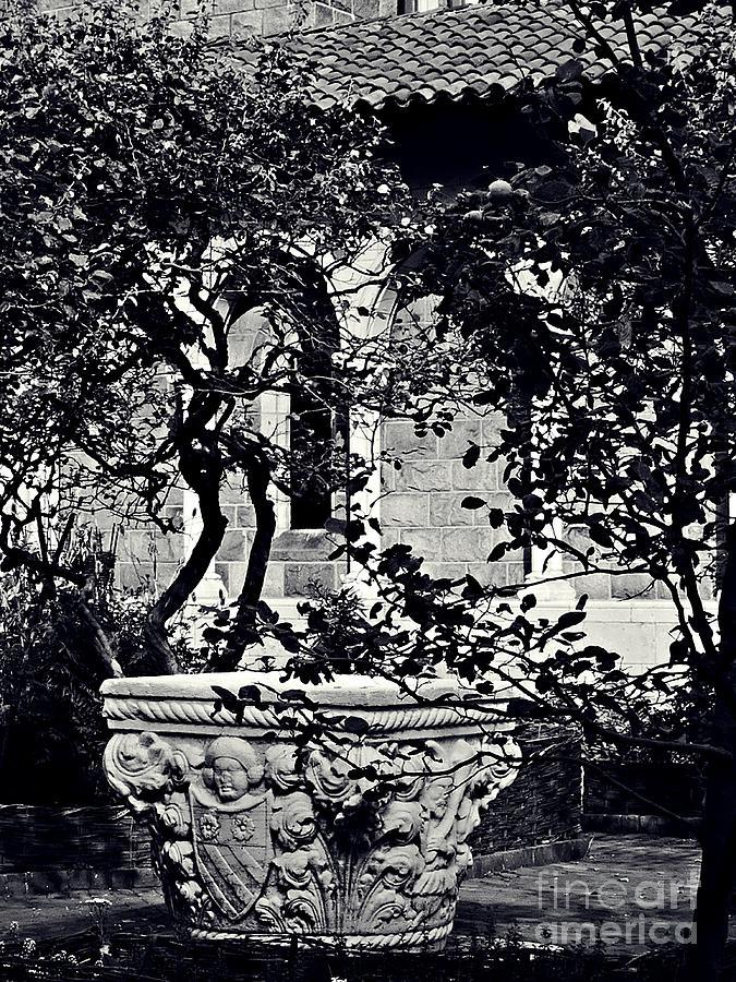 Bonnefont  Cloister Photograph