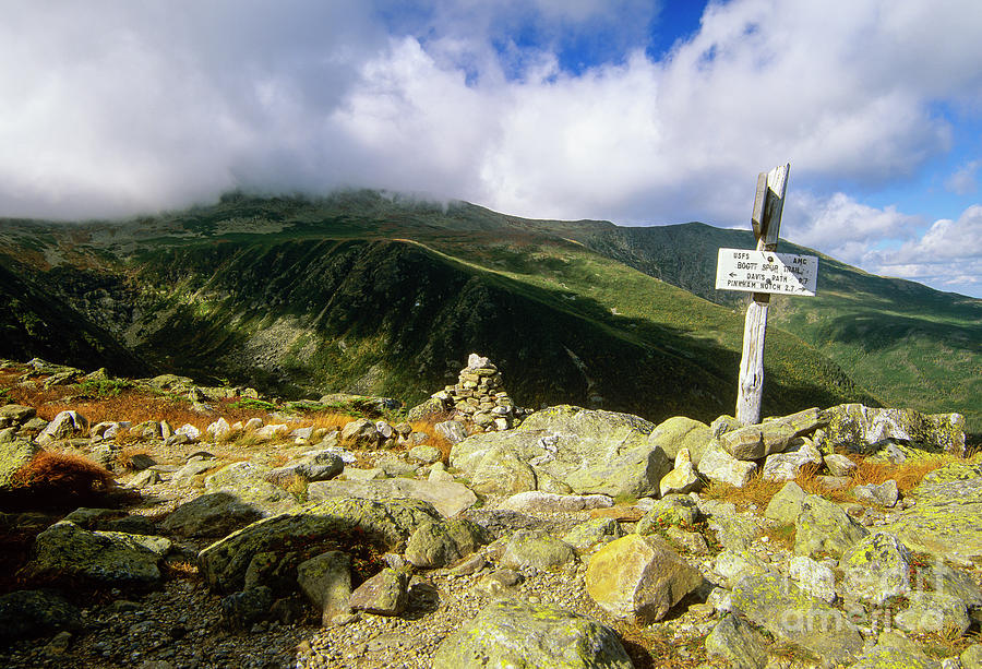 Boott Spur Trail - Mount Washington, White Mountains by Erin Paul Donovan