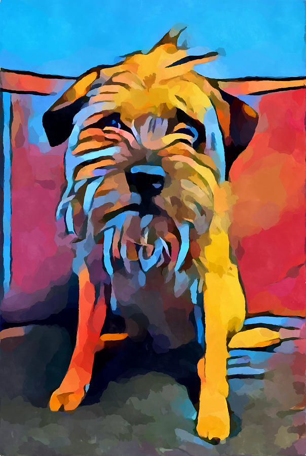 Border Terrier Painting - Border Terrier by Chris Butler