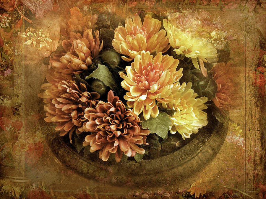 Flowers Photograph - Bordered Mums by Jessica Jenney