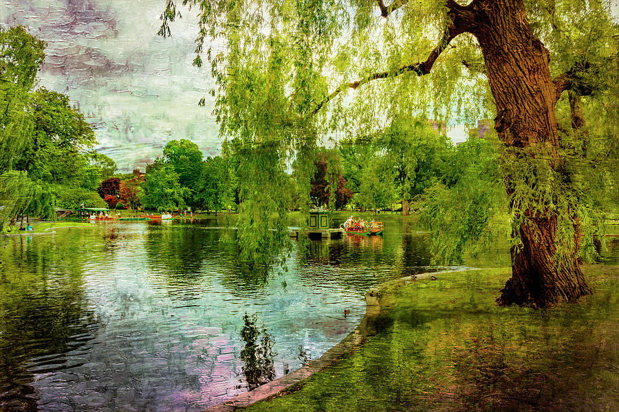 Boston Common Park 5080 by Carlos Diaz