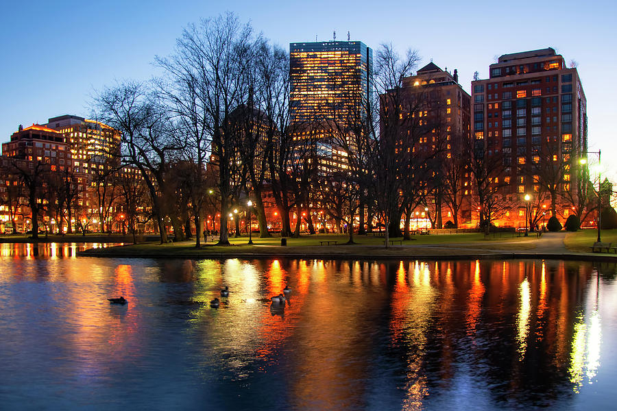 Boston Reflections - Public Garden by Joann Vitali