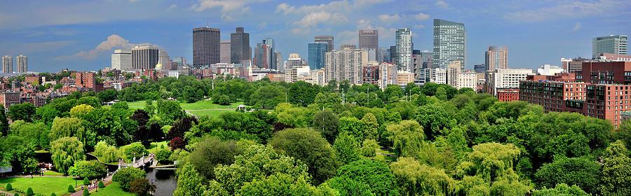 Boston Skyline And Boston Public Garden Photograph by Shobeir Ansari