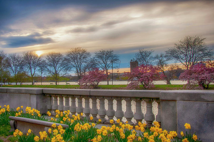Boston Spring on the Charles River by Joann Vitali