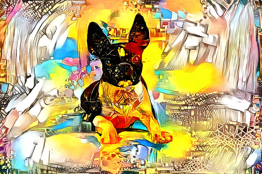 Boston Terrier dog with bright colors by Gina Koch