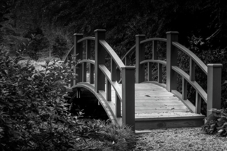 Botanical Bridge by Rick Cooper