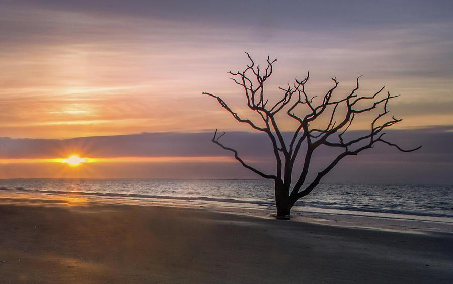 Botany Bay Sunrise by James Woody