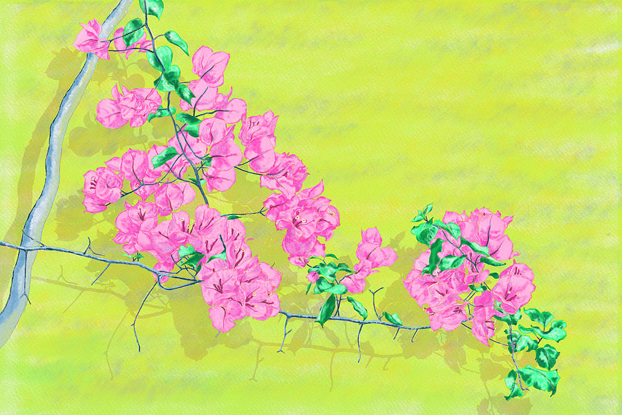 Bougainvillea on yellow wallwatercolor, digital watercolor, digital art, Rebelle, tea time, porcelai by Xavier Francois